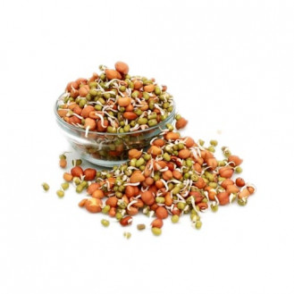 Sprouts - mix gram 125 gm