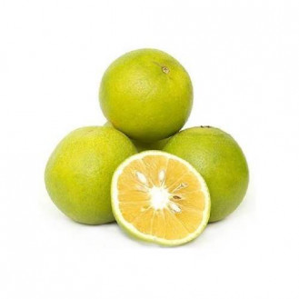 Mausambi / Sweet lime (3 pieces)