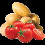 Tomato Combo (1 Kg)